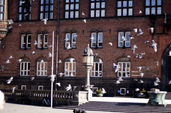 rådhuspladsen
